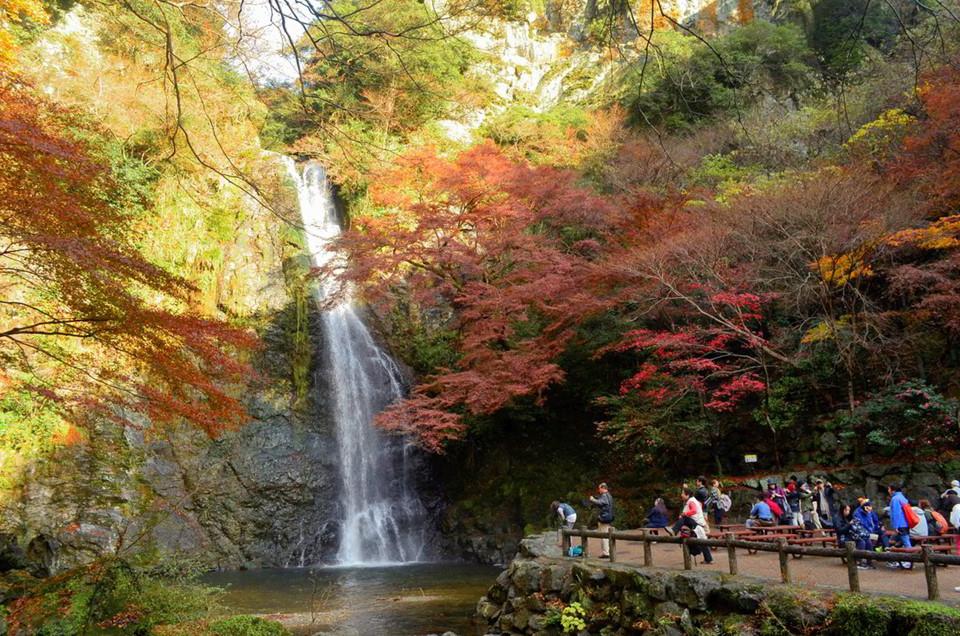 Osaka là điểm đến đầy quyến rũ khi Nhật Bản vào thu. Thành phố này có công viên quốc gia Minoo, nơi phủ kín những tán lá phong chuyển màu rực rỡ, đẹp đến nao lòng giữa tiết thu lãng đãng. Vietjet vừa mở 3 đường bay mới, Hà Nội - Tokyo (Narita, Nhật Bản), Hà Nội - Osaka, TP.HCM - Osaka giúp việc đi lại, du lịch tại Nhật Bản trở nên dễ dàng hơn. Osaka luôn có các trải nghiệm tuyệt vời sau chờ bạn khám phá. Ảnh: Wanderast.