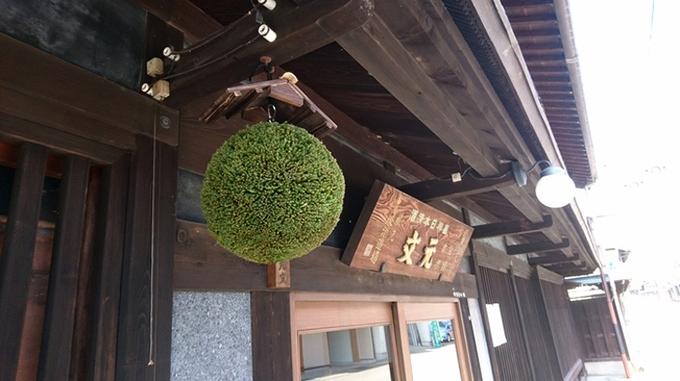 Quả tùng tuyết hay Sakebayashi ở Nhật thường được treo lên trước các cửa tiệm để báo hiệu một mẻ rượu mới vừa kết thúc.