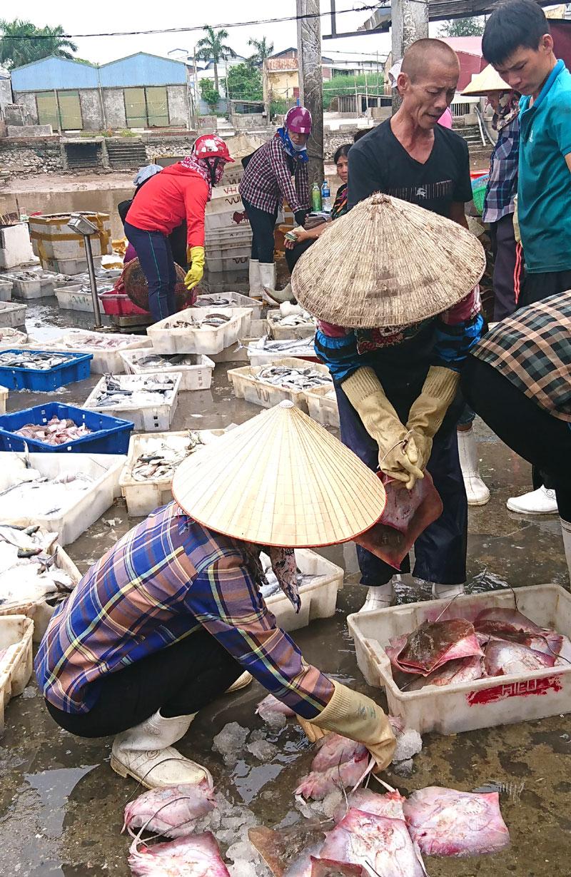 Những con cá đuối còn tươi rói đang được bán sang tay người mua buôn.