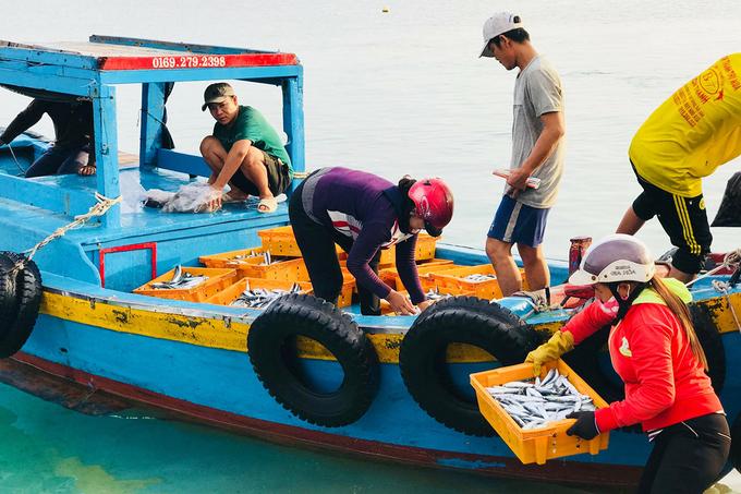 Du khách có thể đến Bãi Phủ khoảng 5h sáng, trong lúc cùng người dân chờ cá về có thể ngắm bình minh. Sau khi ghe cập bến, bạn có thể dạo một vòng để tìm món hải sản ưa thích rồi mua mang về để chế biến.