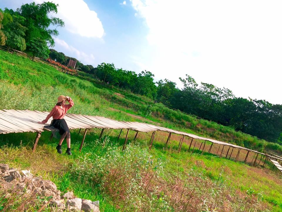 Để tới đây xuất phát từ đê Long Biên bạn đi theo hướng cầu Vĩnh Tuy vào khoảng 1,5km, rẽ phải vào phố Thạch Cầu khoảng 1km nữa là tới.
