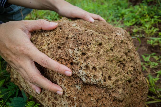 Quanh ngọn núi lửa, du khách cũng dễ dàng bắt gặp những phiến đá nham thạch nằm rải rác trong những thửa ruộng hay những gốc cây cổ thụ còn sót lại của cánh rừng nguyên sinh xưa kia.