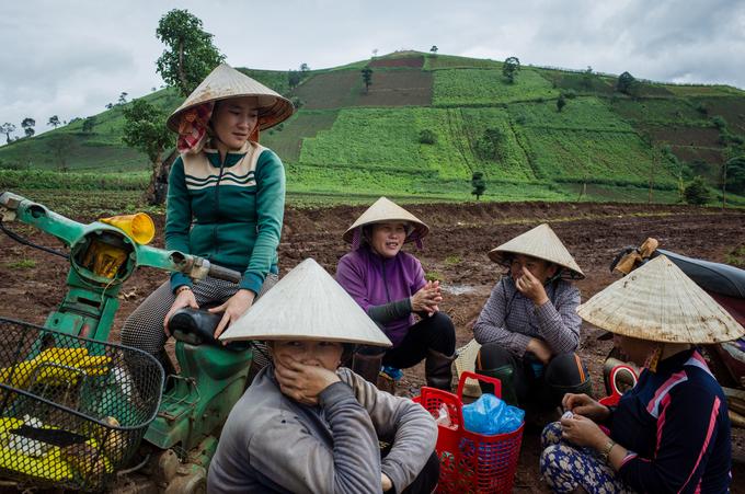 Những người nông dân đến từ các tỉnh miền Trung và phía Bắc đã lập nghiệp ở đây hàng chục năm. Núi lửa Chư Đăng Ya ngừng hoạt động từ hàng triệu năm trước, để lại nơi đây là một vùng đất đỏ bazan màu mỡ, đem đến mùa màng bội thu.