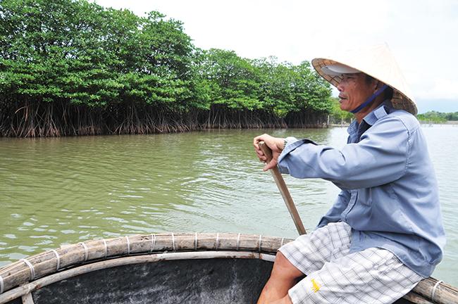 Ngư dân Trần Cường chèo thuyền thúng gần khu rừng đước xanh mướt trên dòng sông Bù Lu.