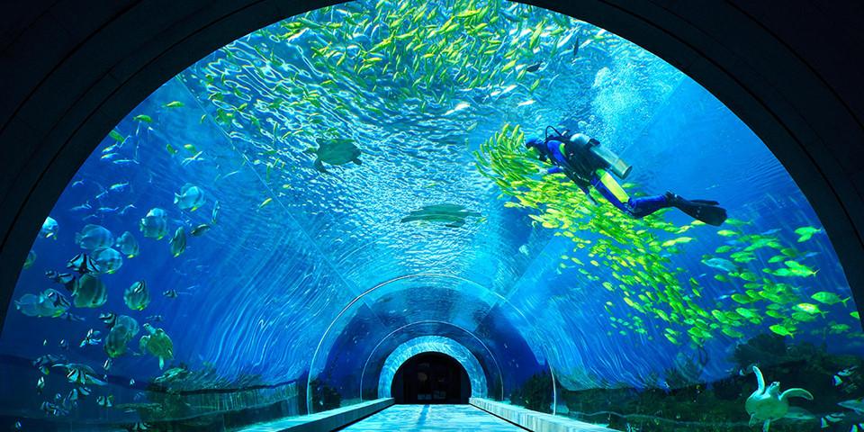 Vịnh Tam Á có bờ biển dài khoảng 20 km và nổi bật bởi các môn thể thao dưới nước như xe máy nước, lặn biển, trượt ván... Hệ thực vật dưới biển phong phú, đa dạng cũng được tái hiện trên phim. Dịch vụ du lịch tại Tam Á đã được đẩy mạnh phát triển từ nhiều năm. Theo đó, vô số các khách sạn, resort sang chảnh tọa lạc quanh bờ biển sẽ đưa du khách đến những trải nghiệm tuyệt vời nhất. Ảnh: Theculturaltrip.