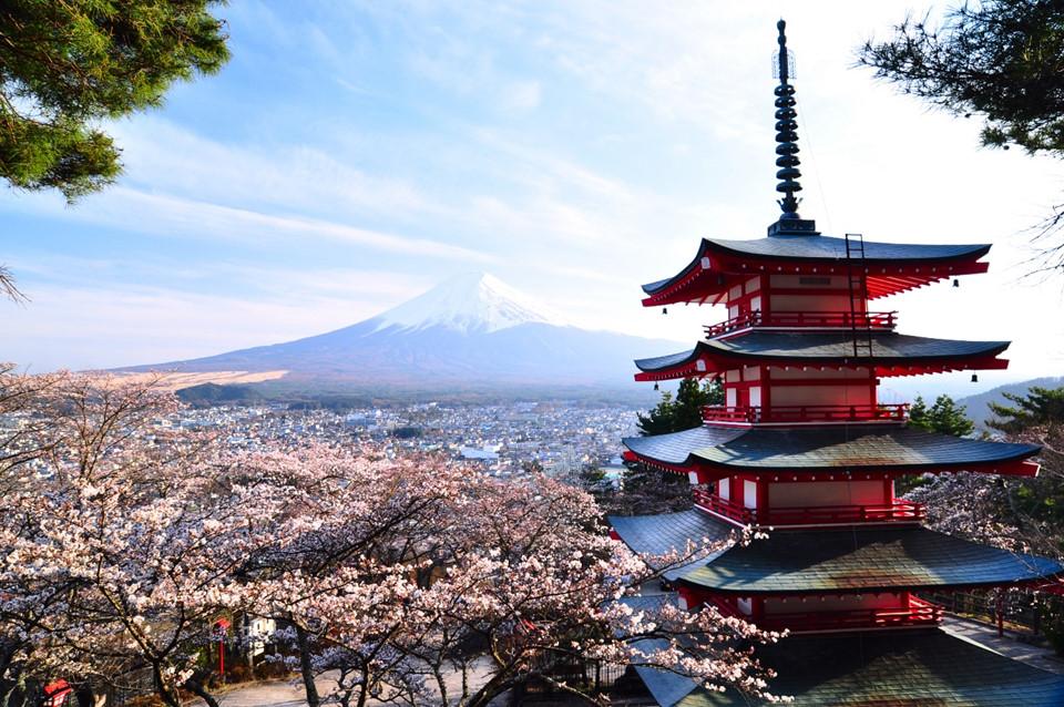 Du khách quốc tế hầu hết ai cũng choáng ngợp trước vẻ đẹp thiên nhiên các địa danh nổi tiếng Nhật Bản. Ngoài thiên nhiên hùng vĩ, nên thơ, Nhật Bản ghi dấu trong lòng khách du lịch với nền văn minh giữa con người và mọi góc đường phố đều sạch sẽ, không khí trong lành. Ảnh: TheDrinksBusiness.