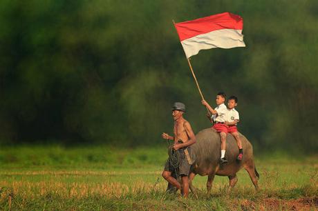 Quốc kỳ của Indonesia và Monaco, Ba Lan rất giống nhau, đều có hai sọc đỏ và trắng nên dễ bị nhầm lẫn. Tỷ lệ hai cạnh của lá cờ Indonesia là 2:3 còn tỷ lệ này ở cờ Monaco là 4:5. Vị trí sọc màu cờ của Indonesia là sọc đỏ ở trên còn cờ Ba Lan có bố trí ngược lại. Ảnh: Crwflags.