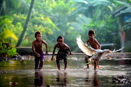 Tiếng Bahasa Indonesia là ngôn ngữ chính thức ở đất nước 260 triệu dân. Tiếng Java cũng phổ biến với 84 triệu người sử dụng. Ngoài ra, quốc gia này còn có hơn 700 ngôn ngữ khác. Riêng ở tỉnh Papua, người dân dùng 270 ngôn ngữ.