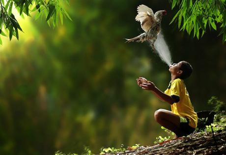 """Theo Tổ chức Bảo tồn Quốc tế, Indonesia nằm trong danh sách 17 nước được coi là """"megadiverse"""" (quốc gia siêu đa dạng). Phần lớn các loài vật trên thế giới đều sống ở đây. Thậm chí, người ta còn tìm thấy những loài không tồn tại ở đâu khác. Ảnh: Drama Fever."""