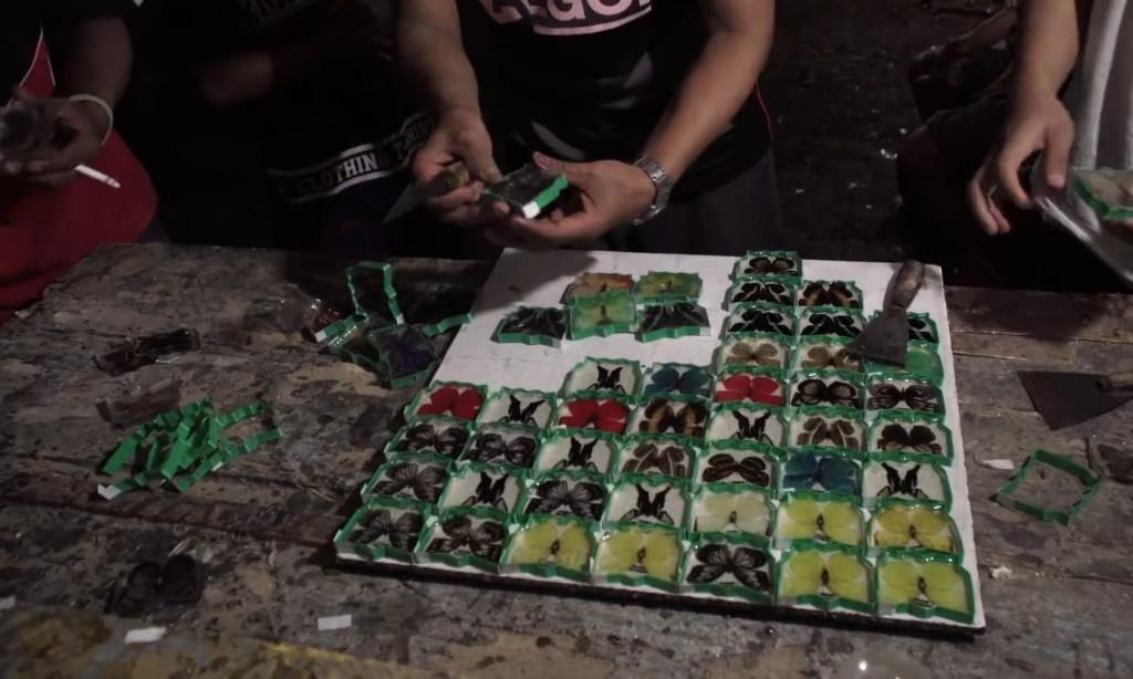 Trên thực tế, quy định của Indonesia về việc săn bắt, buôn bán hay xuất khẩu bướm khá phức tạp và có những ngoại lệ khác nhau. Tùy trường hợp cụ thể, người ta mới có thể kết luận việc làm là hợp pháp hay bất hợp pháp. Tuy nhiên chắc chắn rằng, săn bắt bướm papilio blumei trong vườn quốc gia Bantimurung Bulusaraung là bất hợp pháp.