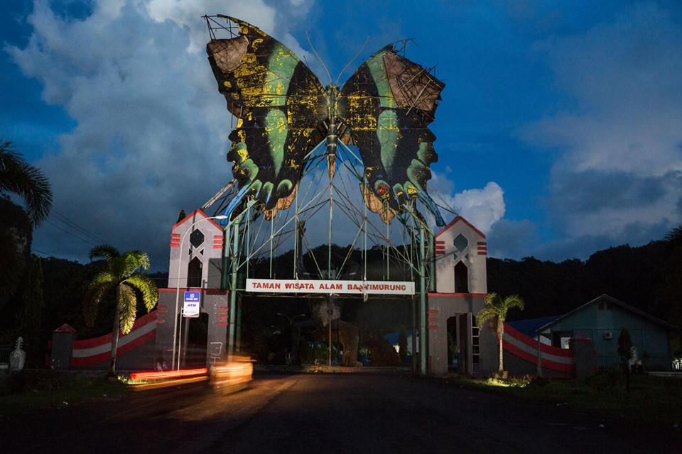 """Người ta cho dựng biểu tượng bướm papilio blumei trên cổng vào khu du lịch sinh thái Bantimurung, trong vườn quốc gia Bantimurung Bulusaraung trên đảo Sulawesi. Giữa thế kỷ 19, nhà tự nhiên học người Anh Alfred Russel Wallace từng đến làng Bantimurung và ngỡ ngàng trước """"vương quốc bướm"""" rực rỡ ở đây. Song, khu vực này hiện phải đối mặt với nạn săn trộm bướm."""