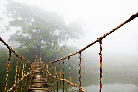 Tác phẩm mang tên 'Bridge Jungle Journey' (Cây cầu dẫn tới rừng xanh) có giá từ 139 USD, cho kích thước khoảng 1x1,3m. Ảnh: Skip Nall.