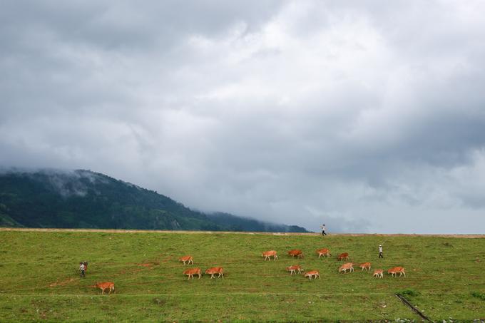 Quanh hồ còn có nhiều địa điểm hoang sơ với đồi núi, hồ nước, con đê... để du khách trekking, ghi lại cảnh sắc hữu tình.