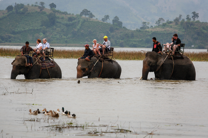 Quanh hồ có hơn 10 con voi sẵn sàng phục vụ nhu cầu của khách. Dịch vụ cưỡi voi có nhiều gói để du khách chọn như gói 15 phút, 30 phút hoặc 60 phút với giá dao động từ 200.000 đến 600.000 đồng.