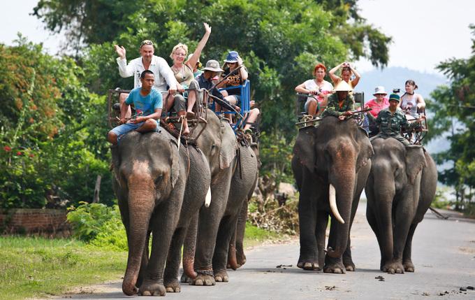 Hành trình cưỡi voi lần lượt đi qua những buôn làng cổ, cánh đồng lúa, hàng cây kơnia và lội nước ven hồ. Sau khi kết thúc chuyến đi, du khách có thể thưởng cho chú voi những món quà nhỏ như nải chuối hay cây mía.