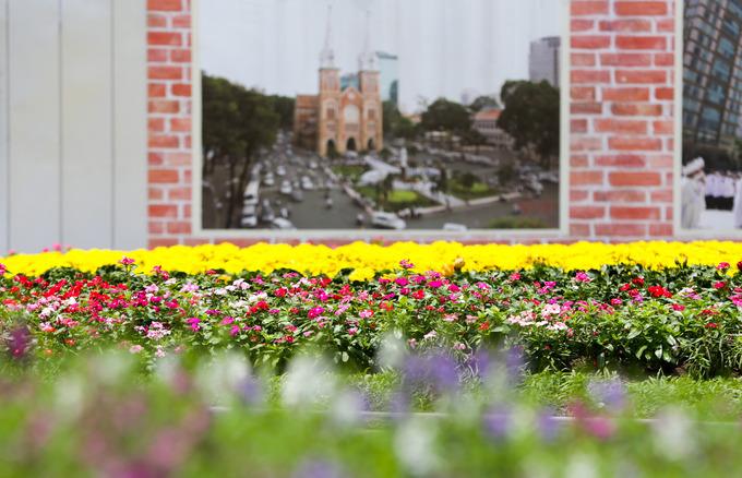 Những bông hoa phi yến khoe sắc tươi tắn ở quanh tượng Đức mẹ. Hoa trồng tại đây sẽ được thay mỗi tháng một lần.