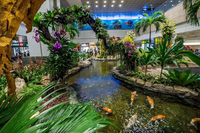 Cảnh quan phía trong sân bay cũng thực sự choáng ngợp. Bạn sẽ bắt gặp nhiều tiểu cảnh được bố trí với các loại cây thật, chiều cao khá lớn, hồ nước, hòn non bộ... khiến du khách ngỡ như lạc vào vườn bách thảo.