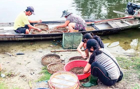 Cảnh mua bán cá tôm ở chợ nổi Ngư Mỹ Thạnh.