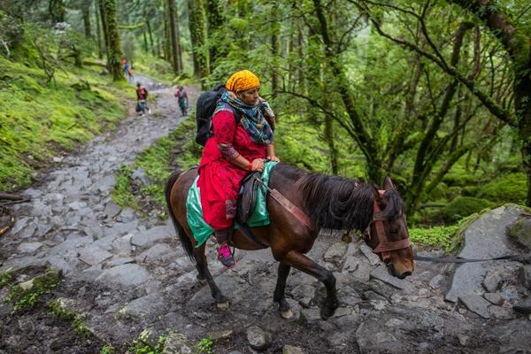 Một người hành hương Hindu ngồi trên lưng ngựa đi qua Vườn quốc gia Langtang một ngày trước ngày rằm tháng 8. Ảnh: Nabin Baral