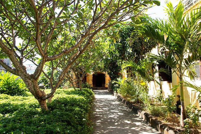 Bao quanh ngôi nhà là những mảnh vườn có cây cối xum xuê, rợp bóng mát.