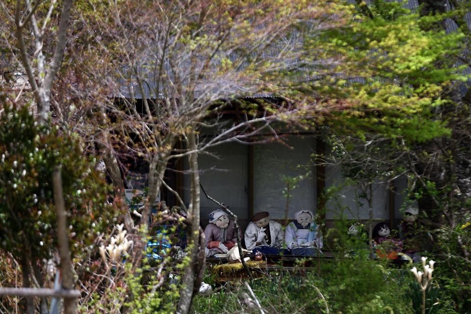 Thị trấn búp bê (Nhật Bản): Sau khi dân số của thị trấn Nagoro giảm xuống chỉ còn 35 người, một nghệ sĩ địa phương tên Tsukimi Ayano đã bắt đầu tạo ra những nhân vật sống động như thật nhằm thay thế những người dân đã chết hoặc chuyển đi nơi khác. Giờ đây, hơn 350 con búp bê sống ở Nagoro đã trở thành một điểm thu hút độc đáo cho du khách.
