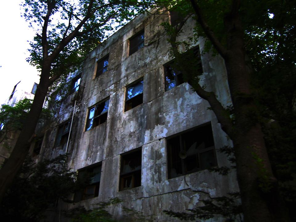 Lạc bước vào đây, du khách có thể cảm nhận không khí u ám của bệnh viện. Sau hơn 20 năm bị bỏ hoang, rêu xanh đã phủ kín công trình. Tòa nhà bị xuống cấp trầm trọng. Ảnh: 123RF.