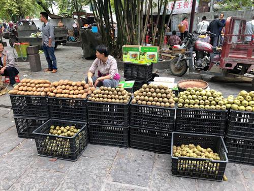 Kiwi, táo... là những loại trái cây được bán phổ biến ở Trung Quốc. Ảnh: Phương Anh.