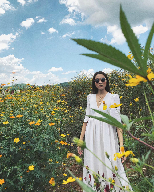 Ba địa chỉ ở Đà Lạt trong chuyến du lịch của Hà Tăng - 10 Lên Đà Lạt đúng mùa hoa dã quỳ, Tăng Thanh Hà không quên rủ hai cô bạn thân tranh thủ chụp bộ ảnh lãng mạn giữa rừng hoa.