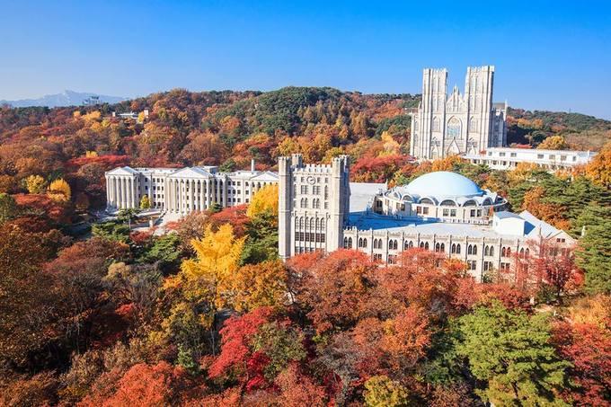 Các trường Đại học ở Seoul, nổi bật là Đại học Kyunghee với các cụm nhà xây theo kiểu kiến trúc La Mã giữa đồi lá vàng lá đỏ rực rỡ là điểm chụp ảnh mùa thu ảo khỏi chê. Đại học Yonsei có khuôn viên rộng cùng hàng cây phong đỏ rất đẹp. Đại học nữ Ewha hiện đại hay Đại học Hanyang bên sông Hàn thơ mộng cũng là điểm ngắm lá thu đẹp ngay tại trung tâm thủ đô