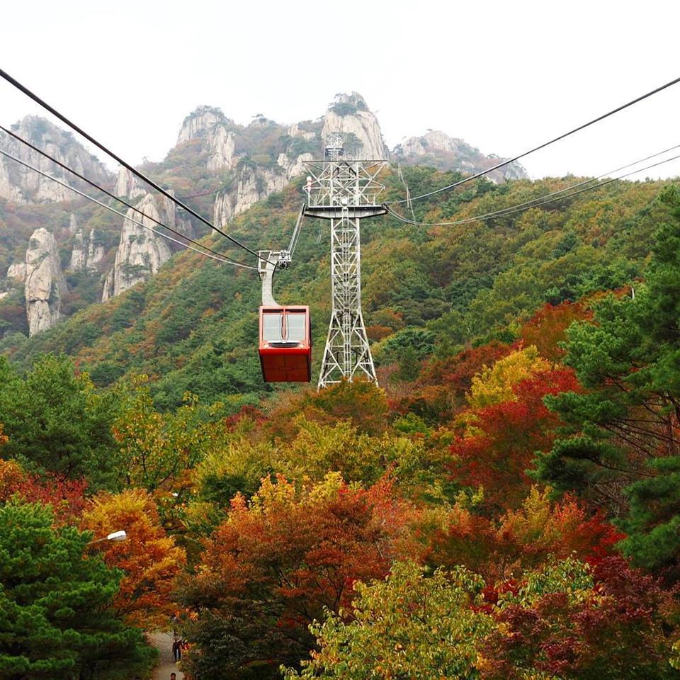 Điểm thu hút du khách nhất tại đây chính là cây cầu treo Geumgang Gureumdari vắt ngang khe núi sâu cao 300 m trên mực nước biển. Nếu không ngại thử thách bản thân một chút, trải nghiệm ngắm cảnh từ trên cáp treo sẽ là kỷ niệm đáng nhớ nhất bên cạnh quãng đường ngắm cảnh của du khách đến Hàn Quốc. Ảnh: @jall_pix.