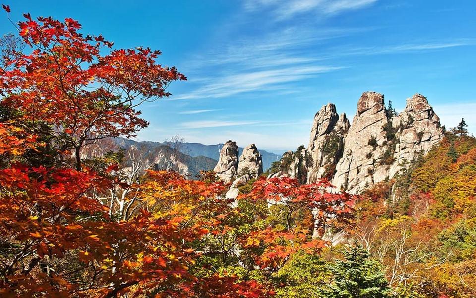 Công viên Quốc gia Seoraksan: Nằm ở Sokcho, Gangwon-do (phía đông bắc Hàn Quốc), công viên Quốc gia Seoraksan là nơi có ngọn núi cao thứ ba Hàn Quốc. Đây sẽ là địa điểm đầu tiên có thể nhìn thấy những tán lá của mùa thu. Ảnh: @enjoykorea.asia.