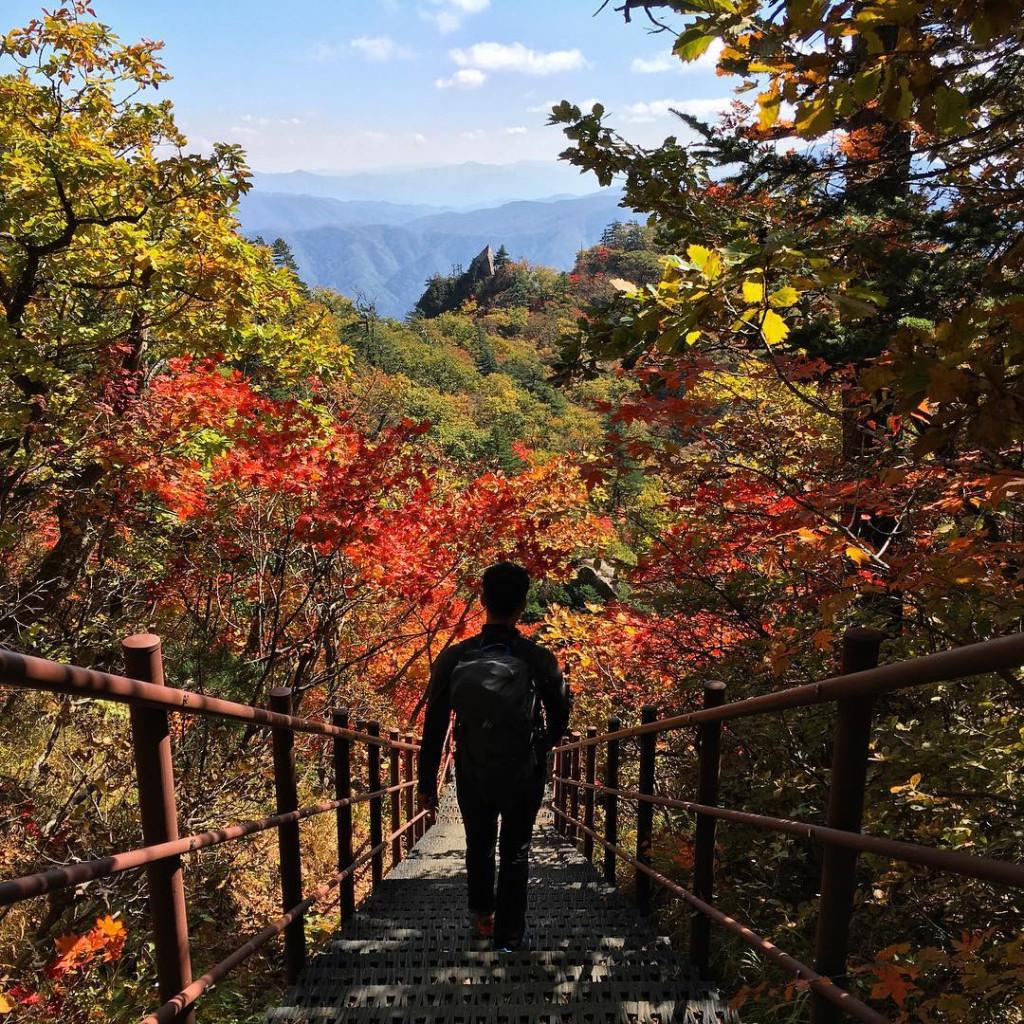 Được bao quanh bởi những đỉnh núi hùng vĩ, hình thành nên các phiến đá đặc biệt cùng thung lũng trải dài, Seoraksan đẹp quanh năm. Nhưng phải đến những tháng mùa thu, nơi đây mới khiến du khách phải ngỡ ngàng bởi một màu đỏ và vàng thẫm của lá phong bao phủ dọc các con đường… Ảnh: @vijaventure.