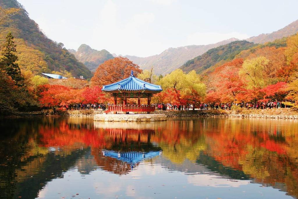 Bên cạnh đó, công viên này còn được biết đến bởi hai ngôi đền Phật giáo lớn là đền Baekyangsa và đền Naejangsa. Con đường bộ từ Trung tâm thông tin đến đền Naejangsa trải dài với 108 cây cổ thụ, mang đến một thảm lá mùa thu rực rỡ sắc màu. Ảnh: @seara3112, emilylai_ladyem.