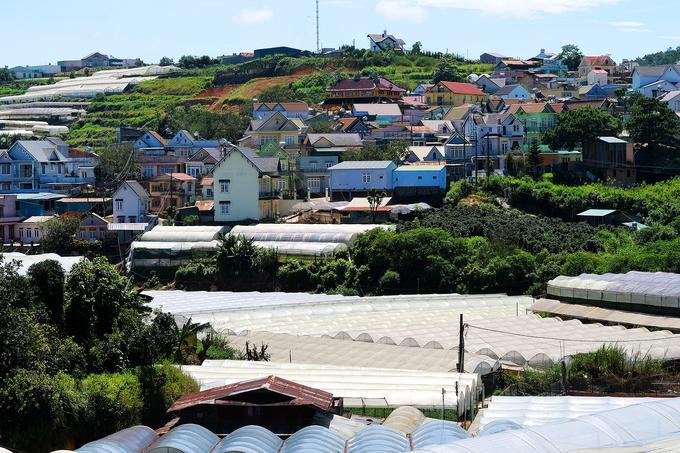 Các ngôi nhà mái dốc trên sườn đồi - kiến trúc quen thuộc của vùng đất Đà Lạt.