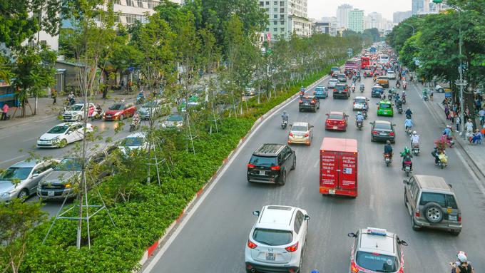 Ở Hà Nội, có hàng trăm cây phong được trồng từ hồi tháng một và đang phát triển khá tốt. Nếu thời tiết thuận lợi và cây được chăm sóc tốt, người dân sẽ được trải nghiệm khung cảnh hàng phong chuyển màu như ở các nước ôn đới.