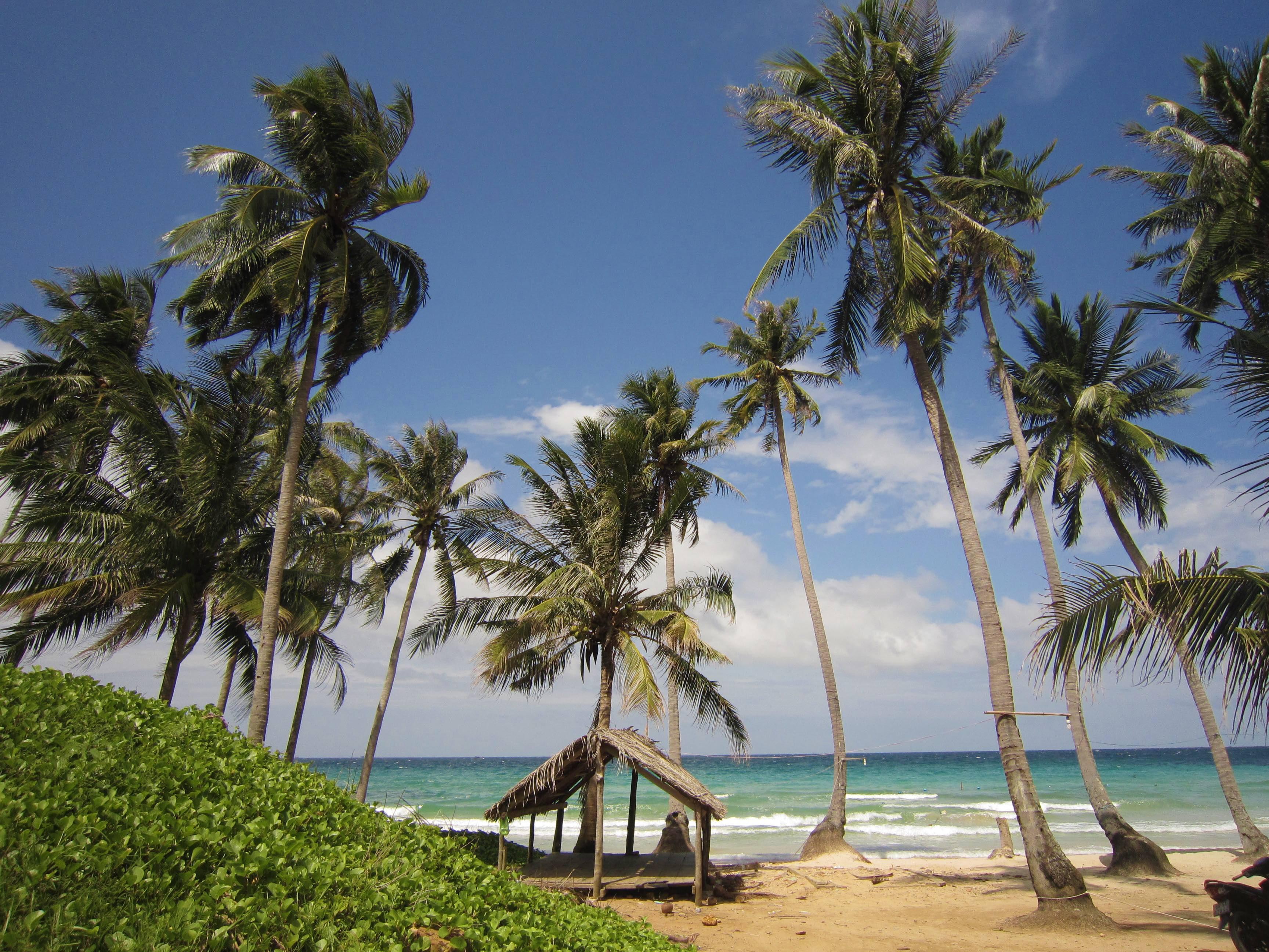 Bãi biển vắng người yên bình đến lạ