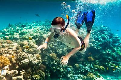 Ảnh: @Pulau Beras Basah