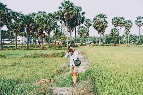 Những cánh rừng thốt nốt xanh mướt. Ảnh: Linh Sea.