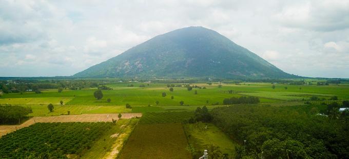 Vườn nho rừng của ông Nguyễn Văn Thông (xã Phan, huyện Dương Minh Châu, Tây Ninh) rộng khoảng 4,5 ha, nằm dưới chân núi Bà Đen, được nhiều người biết tới hơn một năm nay.