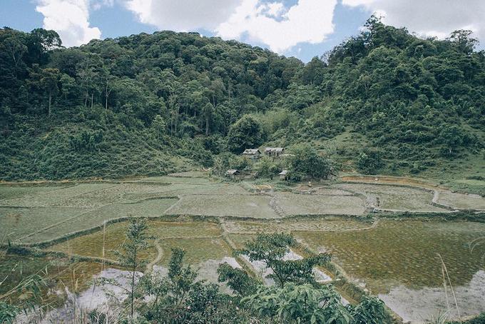 Vườn Quốc gia Kon Ka Kinh  Vườn có diện tích hơn 41.000 hecta, nằm về phía đông bắc tỉnh Gia Lai, cách thành phố Pleiku khoảng 50 km. Vườn chủ yếu là rừng nguyên sinh với các kiểu thảm thực vật rừng chính bao gồm: kiểu rừng kín thường xanh, mưa ẩm á nhiệt đới núi thấp và kiểu rừng kín hỗn giao lá kim và lá rộng, chứa rất nhiều pơ mu. Kiểu rừng này chỉ thấy duy nhất ở đây.  Người ưa thích trekking có thể chinh phục đỉnh Kon Ka Kinh với độ cao hơn 1.700 m. Đứng trên độ cao này, bạn có thể phóng tầm mắt để ngắm nhìn toàn cảnh núi rừng hùng vĩ. Ảnh: @luongtieuvi.