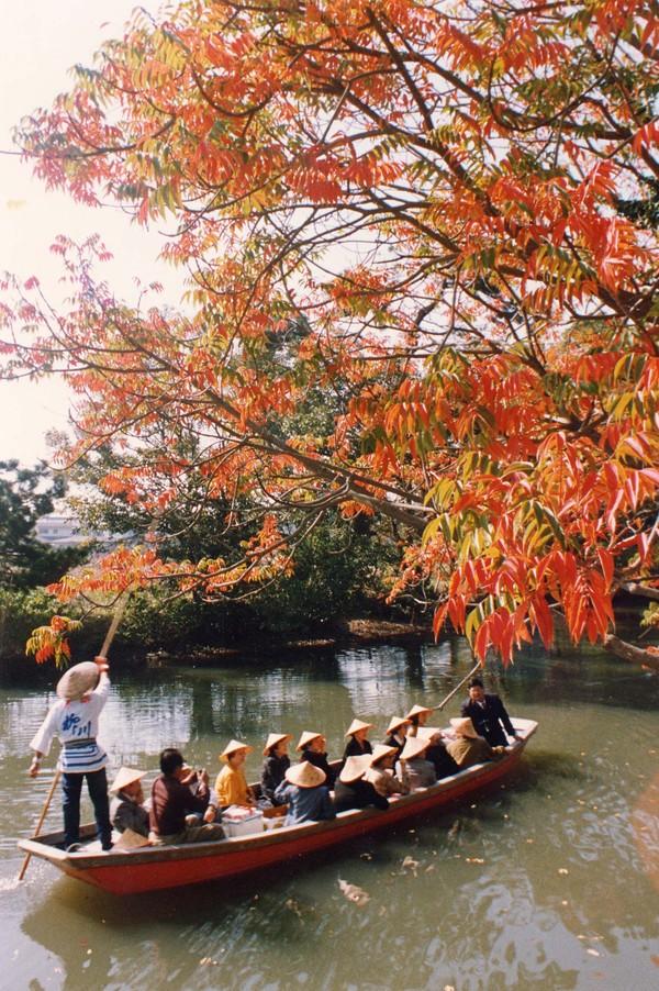 Thành phố Yanagawa Yanagawa (Fukuoka) được ví như Venice của Nhật Bản bởi có tới gần 500 kênh đào kết nối các dòng sông, du khách tới không thể bỏ qua hoạt động ngồi thuyền ngắm cảnh đôi bờ. Dọc các bờ kênh đào là những hàng liễu xanh rủ bóng mát ngày hè, hoa anh đào rực nở vào xuân hay không thể thiếu mùa lá đỏ vào thu. Ảnh: JTB.