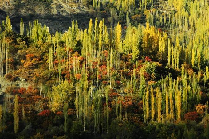 """""""Giữa những bộn bề của cuộc sống, thật trân quý biết bao những giây phút được tìm về với nguyên bản, ngồi bên suối ngắm những tia nắng đầu tiên dần phủ lên đỉnh núi tuyết một màu hồng rực, cảm nhận hơi thở của núi và lời thì thầm của những cơn gió mùa thu. Tôi chưa được đi nhiều nơi, nhưng tôi tự hỏi liệu rằng còn nơi nào khác trên thế giới này mà mùa thu đẹp hơn nơi này. Tin tôi đi, đến miền bắc Pakistan là bạn sẽ chạm đến thiên đường"""", anh Minh Hải nhớ lại hành trình của mình."""