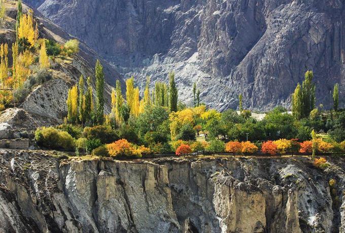 Giữa vách đá cằn cỗi, những khóm cây rừng vẫn vươn lên mạnh mẽ, khoe sắc lá mùa thu, đẹp đến nao lòng.