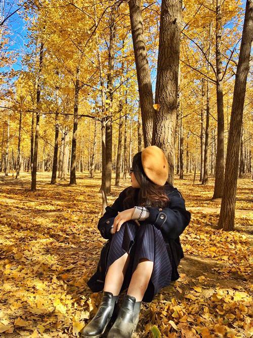 Sống ở Bắc Kinh một thời gian, Thảo tinh tường nhiều địa điểm chụp ảnh đẹp và các chốn vui chơi của dân bản xứ. Mới đây, cô gái trẻ bất ngờ gây xôn xao trong cộng đồng du lịch bởi bộ ảnh mùa thu vàng ở thành phố này đẹp đến nao lòng. Nhiều người cũng trầm trồ, xuýt xoa với hình ảnh thảm lá vàng tỏa sắc trong nắng tháng 11 trong một khu rừng còn nhiều nét hoang sơ và vắng người qua lại.