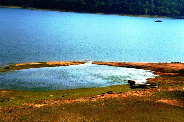 Những bãi bồi nổi lên giữa hồ nước- Ảnh: LÊ TRUNG