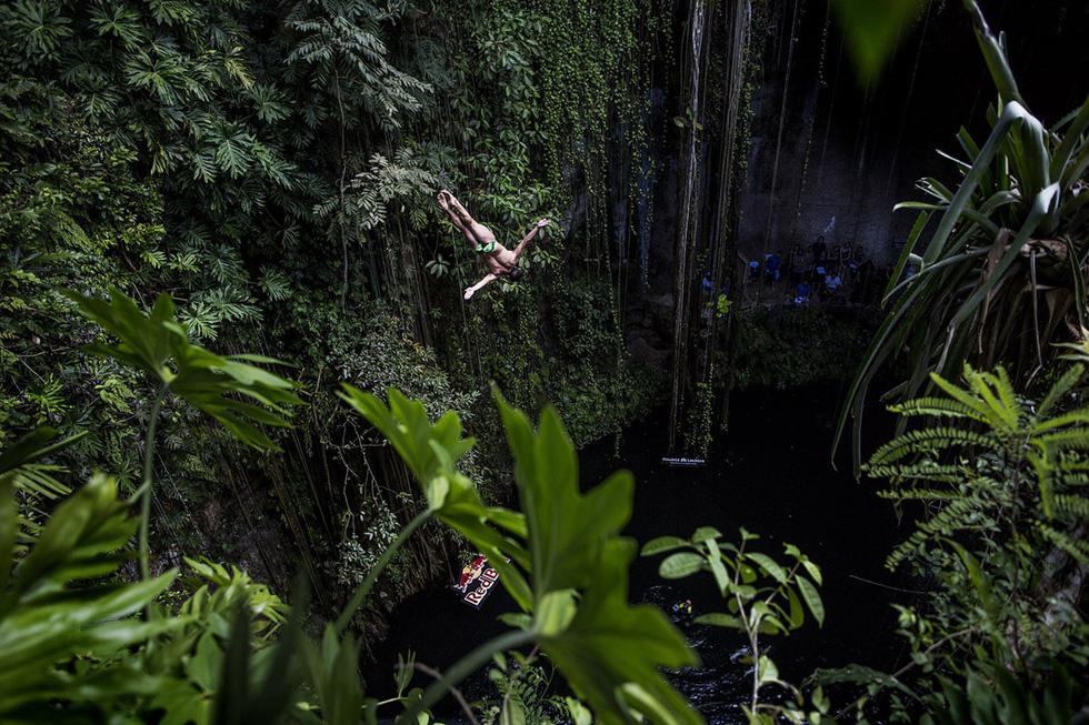 Rừng nhiệt đới và đường bờ biển vùng Tulum nhìn từ trên cao - Ảnh: Diego Echandi/Shutterstock