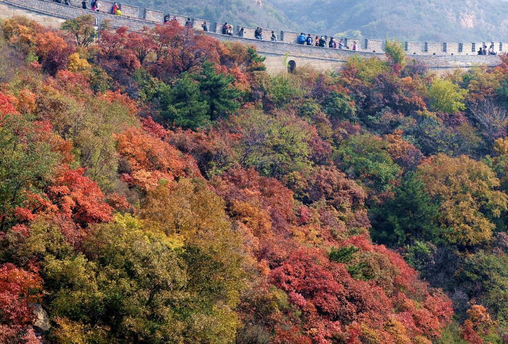 Vào mùa thu, thời tiết thuận lợi là dịp Vạn Lý Trường Thành tấp nập du khách đến tham quan. Có những đoạn thành chật kín bởi dòng người đi bộ. Ảnh: Lutmans.