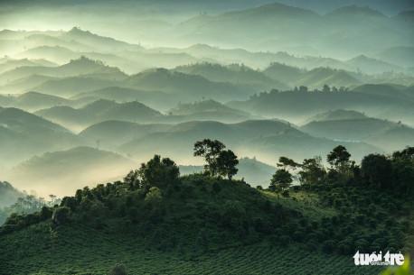 Những ngọn núi xếp chồng từng lớp mềm mại như sóng trong sương sớm. Du khách có thể ngắm cảnh này trên đường lên đỉnh Đại Bình, một ngọn núi nổi tiếng ở Bảo Lộc - Ảnh: LÊ VĂN CƯỜNG