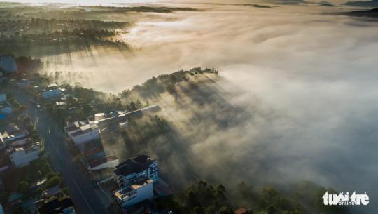 Đường Trần Phú, trục đường chính của Bảo Lộc - Ảnh: LÊ VĂN CƯỜNG