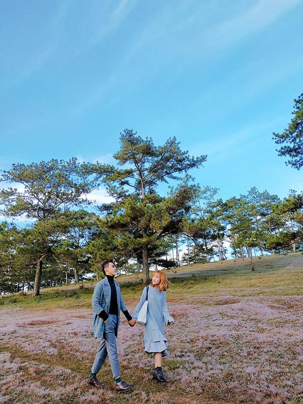 Đồi cỏ ở Lạc Dương, Lâm Đồng là nơi có cỏ hồng được biết đến đầu tiên nhờ những bức ảnh được đăng tải lên mạng xã hội. Để đến đây, bạn đi từ trung tâm Đà Lạt đến Thung Lũng Vàng khoảng 14 km, sau đó chạy xe máy thẳng vào đồi hoặc có thể đi bộ thưởng ngoạn.